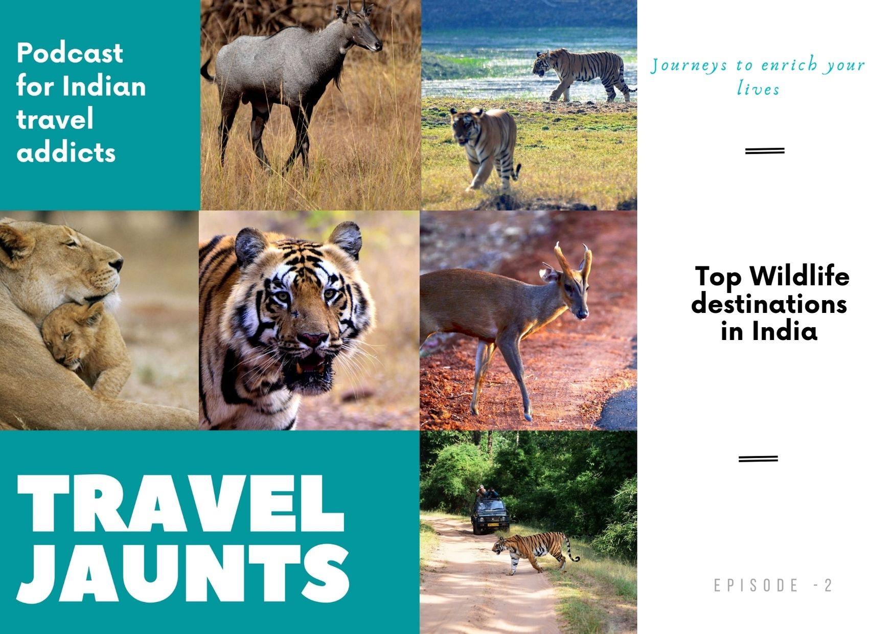 Top wildlife destinations India Podcast