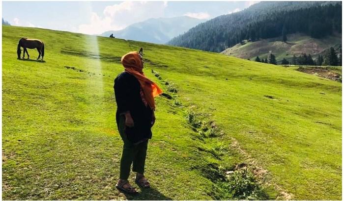 Gurez Valley Kashmir, Gurez Valley (Bandipora District) , Leh-Ladakh, A Journey to Kashmir's Gurez Valley, Planning To Visit Gurez Valley, Gurez Valley