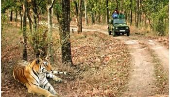 DOS and DON'TS in Corbett National Park, Safety Measures at Corbett, JIM CORBETT NATIONAL PARK Travel Guide, Corbett Tiger Reserve, Jim Corbett National Park India