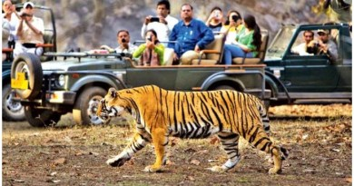 Jim Corbett National Park - How to Visit , 5 Zones , Where to Stay