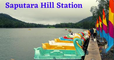 Saputara Hill Station