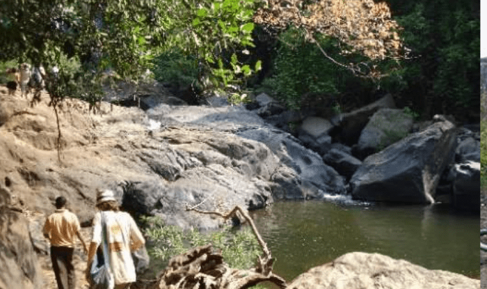 Know what is special in Lord Mahaveer Wildlife Sanctuary of Goa