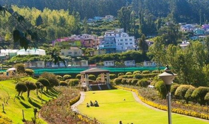 Ooty Honeymoon Tours - This is the Best Place for Couples, get information here