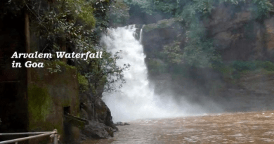 Learn what is special about Aravelum Waterfall