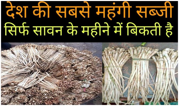khukhadi-most-expensive-vegetable-of-country-its-price-1200-rs-per-kg