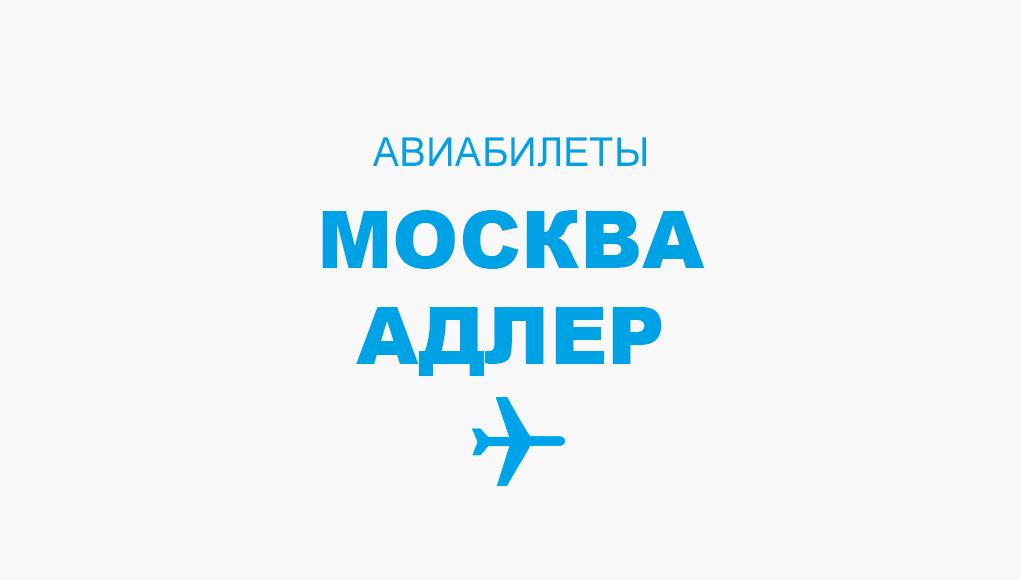 Авиабилеты Москва - Адлер прямой рейс, расписание и цена