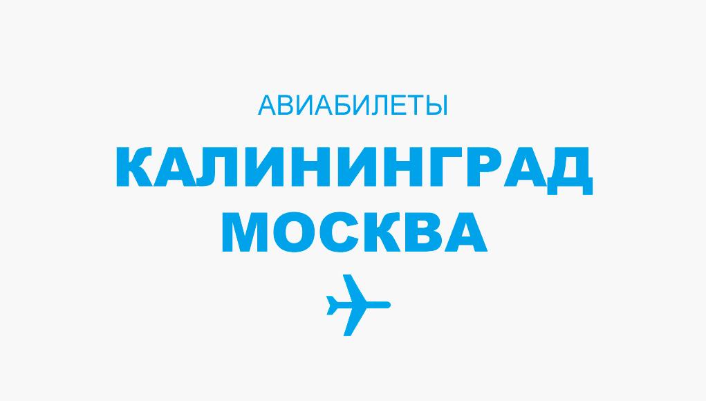 Авиабилеты Калининград - Москва прямой рейс, расписание, цена