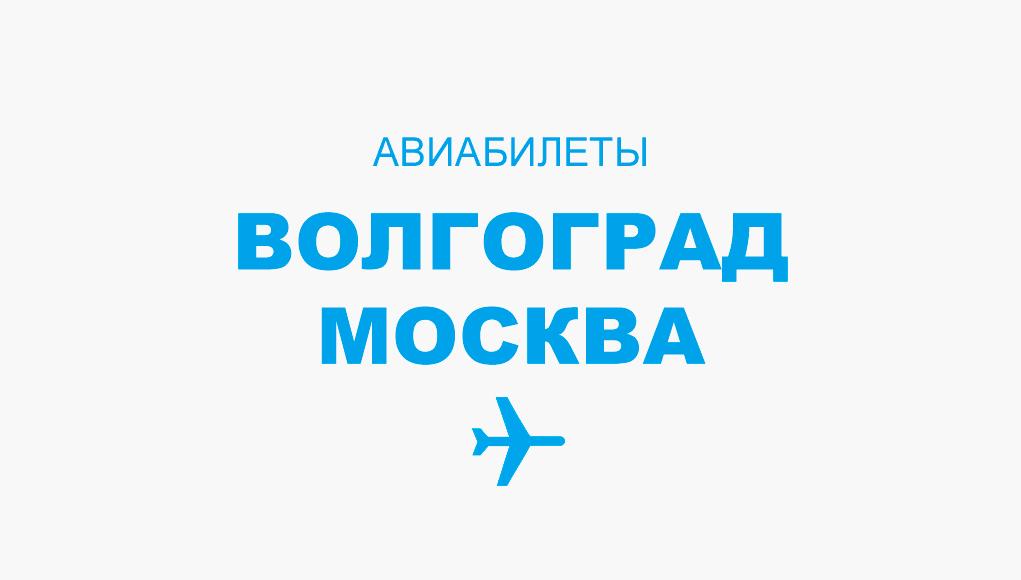 Авиабилеты Волгоград - Москва прямой рейс, расписание и цена