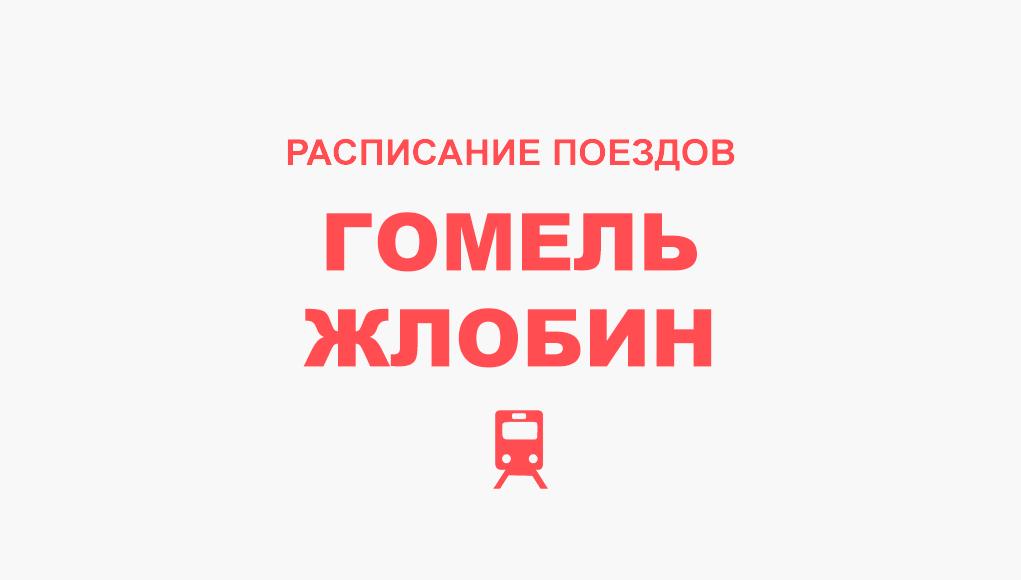 Расписание поездов Гомель - Жлобин