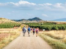 What's the best time to walk the Camino de Santiago?