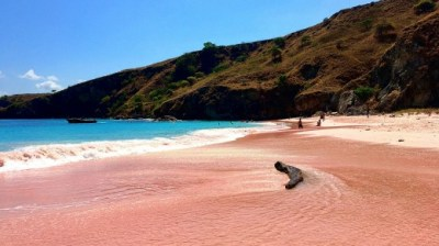 Komodo Island, Indonesia, tourist ban: Visitors to be ...