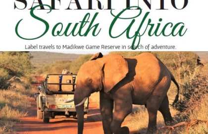Label Magazine - Safari Into South Africa 2