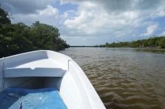 Rio Lagartos 4