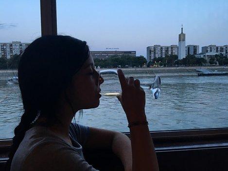 Crociera Danubio 1