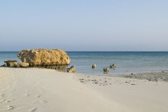Sharm El Luli 5