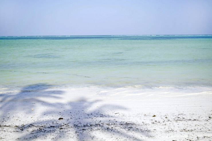 Maree a Zanzibar