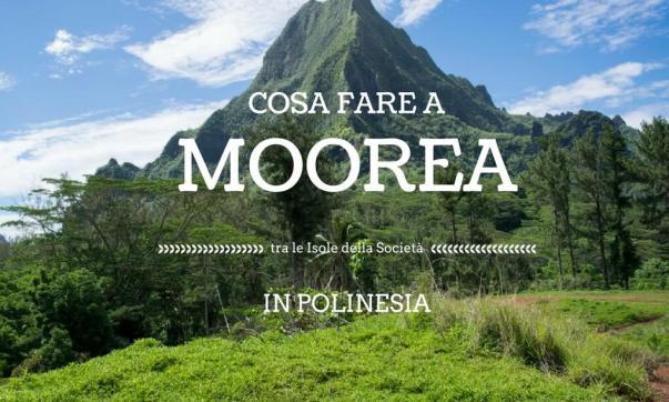 Cosa fare a Moorea, tra le Isole della Società in Polinesia