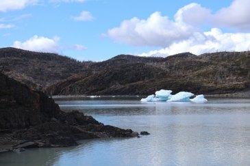 Lago Gray 2