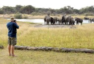Hwange National Park