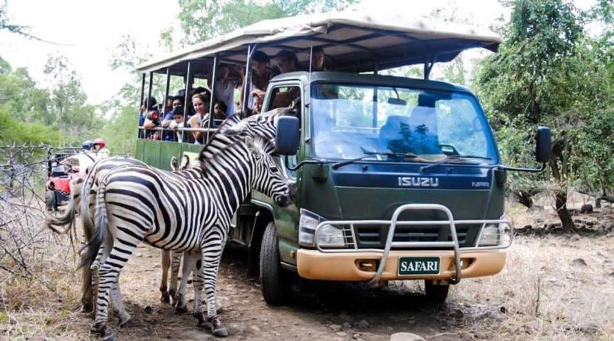 wildlife parks Mauritius cheap flights to mauritius, direct flights to mauritius, last minute flights to mauritius, flights to mauritius, travel tips for mauritius