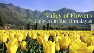 Valley of Flowers in India: Heaven in the Himalayas