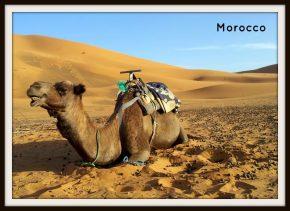Morocco, Sahara desert, north Africa