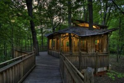Treehouse lit up at night
