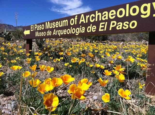 Museum, El Paso, Texas, Travel, Travelling Book Junkie