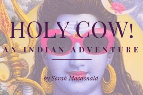 Holy Cow! An Indian Adventure book review
