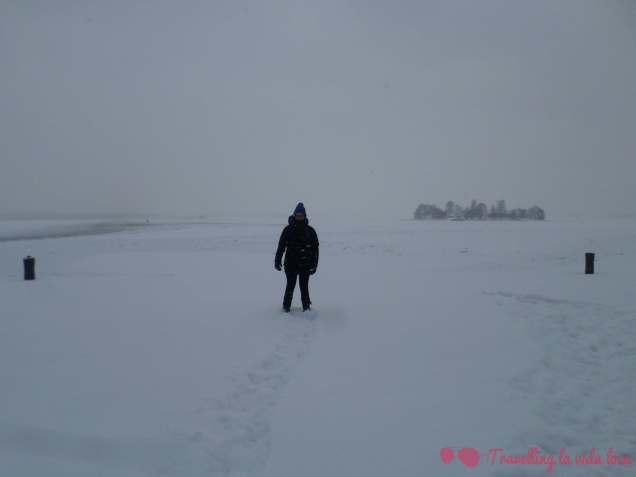 Suomenlinna nevada
