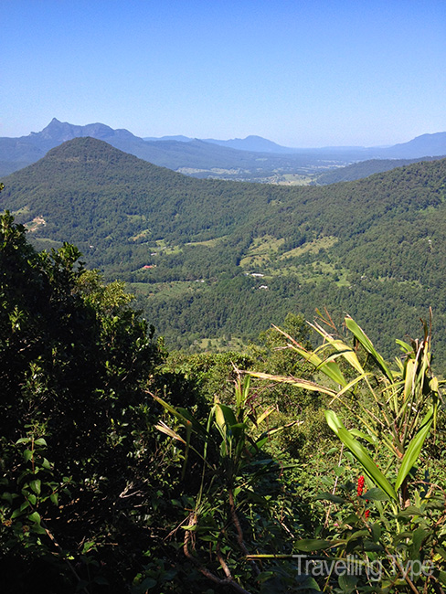 Gold Coast hinterland walks