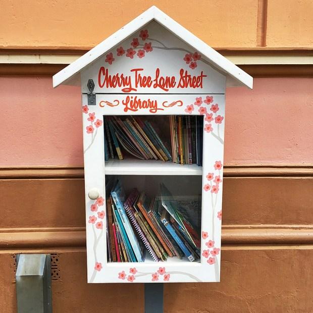 Cherry Tree Lane Street Library, Maryborough Queensland