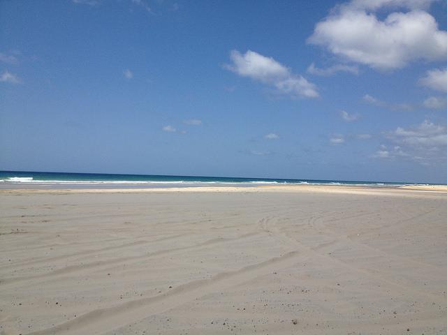 Sandy beach coast