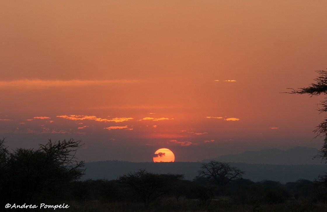 Africa conservation adventure sunset travellivelearn.com