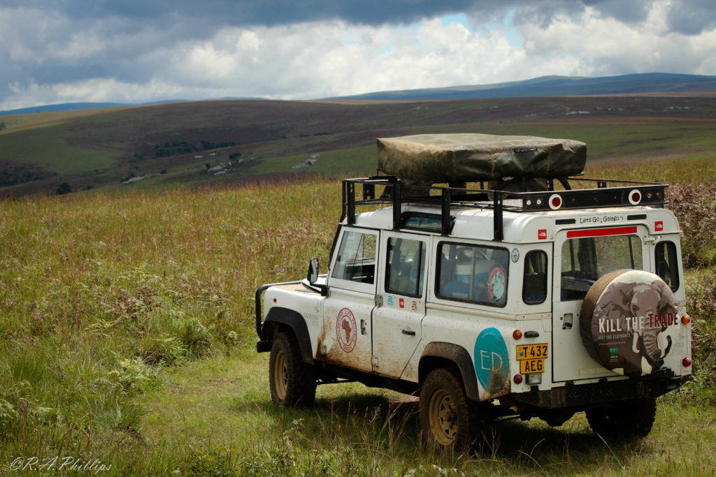 africa-galago-in-the-highlands-of-malawi-rebecca-phillips-and-andrea-pompele-travellivelearn-com
