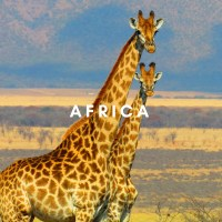 expat travel live learn africa