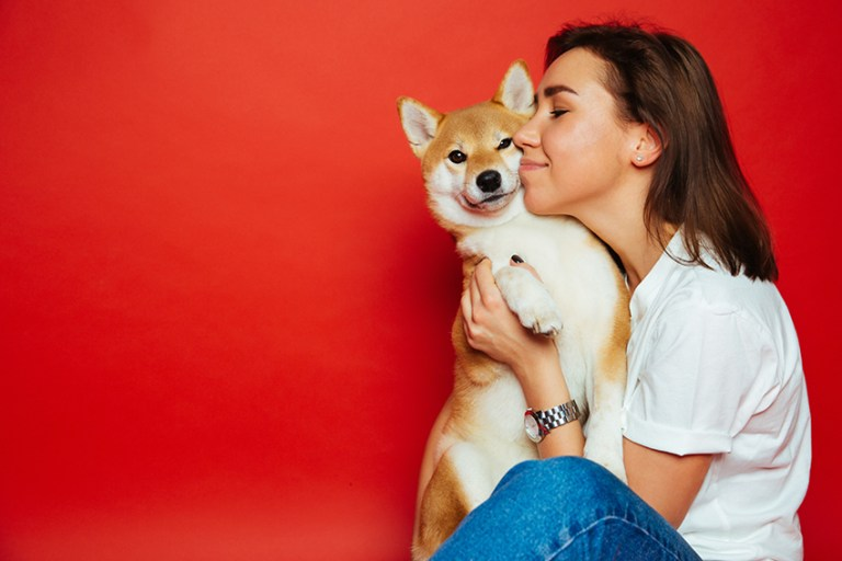 In home pet boarding sitter's guide to dog care