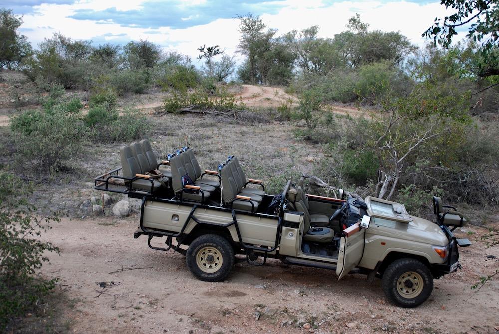 Safari in het Krugerpark Balule Nature Reserve Zuid-Afrika
