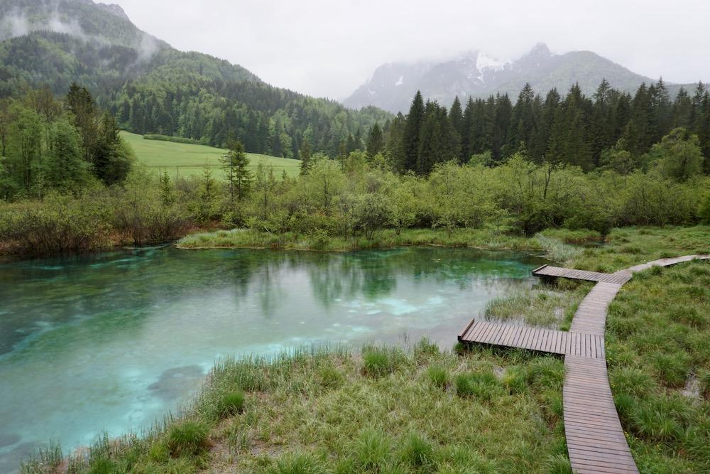 Zelenci natuurreservaat Kranjska Gora Slovenië