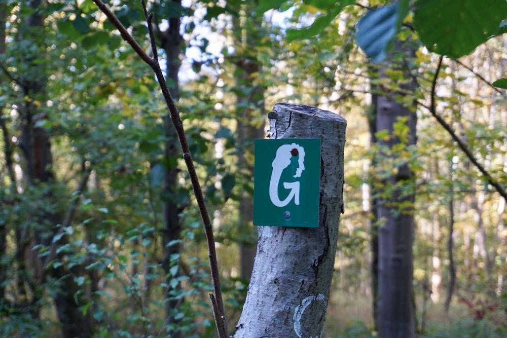Wandelen Grimmsteig Hessen Duitsland