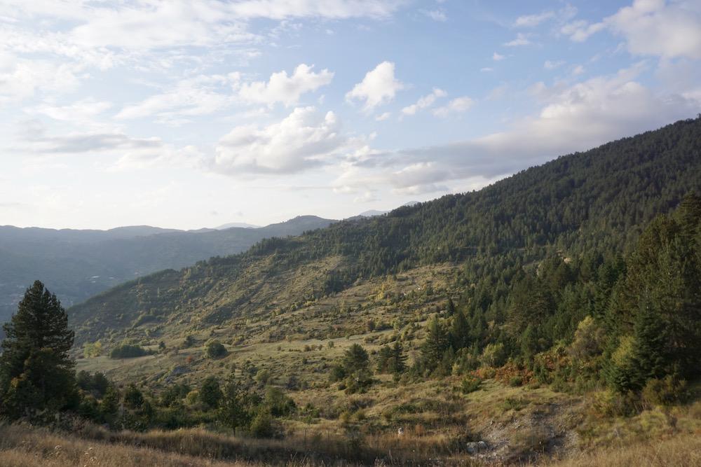 Grand Forest Metsovo Griekenland