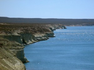 Puerto Madryn Patagonia steppe