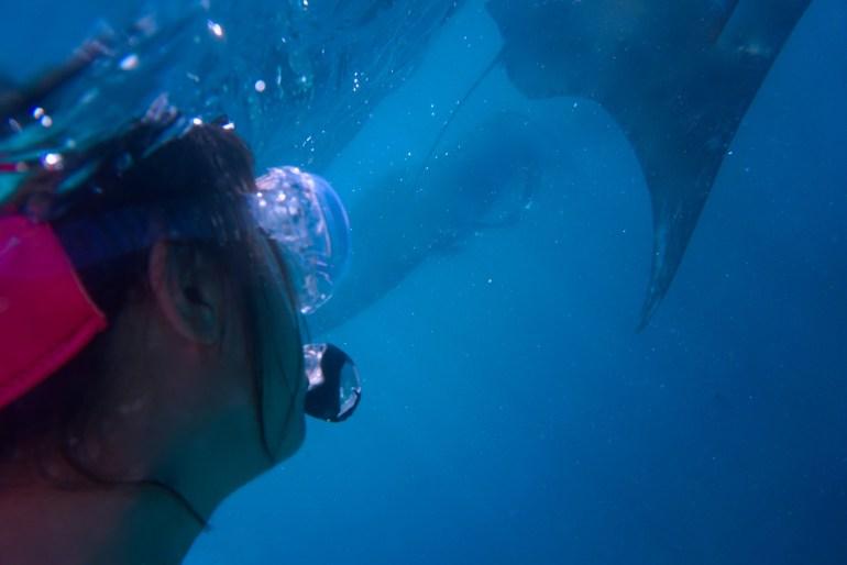 snorkel selfie manta (1)