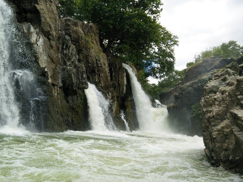 Hogennakal Waterfalls_2
