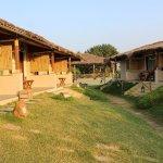 Asiatic Lion Lodge Gujarat itinerary