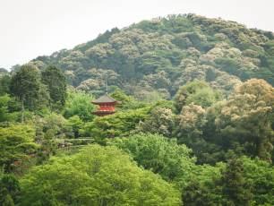 itinéraire-3-semaine-japon-3