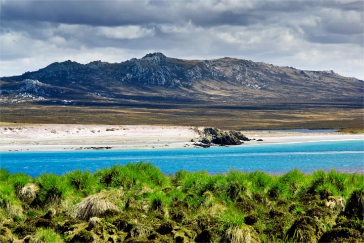 Uruguay umfasst eine fläche von insgesamt 176.215 km². Falklandinseln - Das Tor zur Antarktis | Travelmyne.de