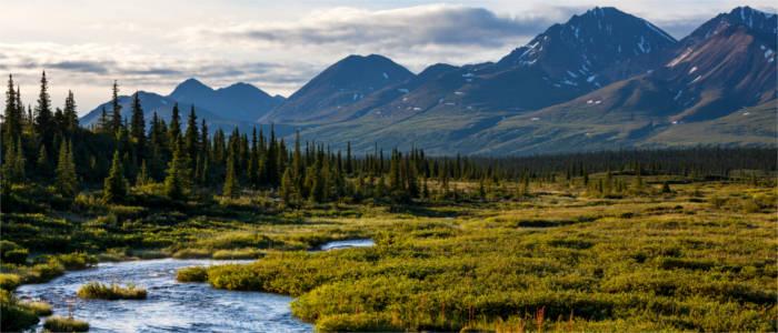 Alaska Abenteuerliche Wildnis Travelmyne De