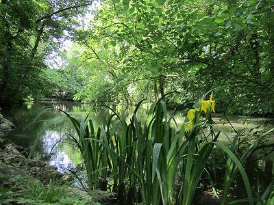 Spring in Sarvar Arboretum