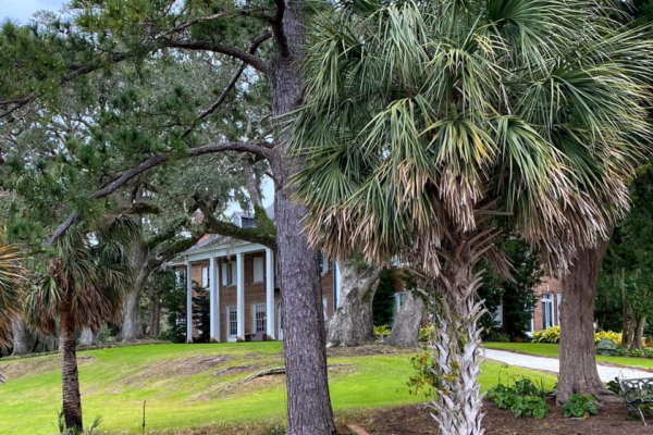 Hobcaw House